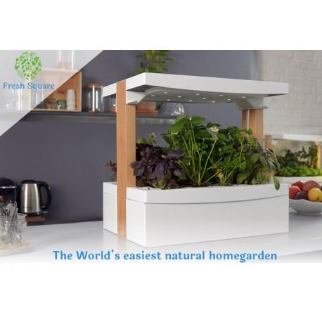 Projet Complet - Potager d'intérieur Fresh Square