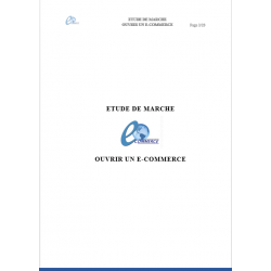 Etude de marché e-commerce (PDF)